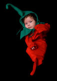 Chili Pepper Baby Royalty Free Stock Photography