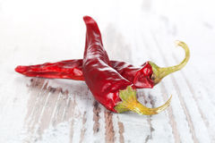 Chili pepper background. Royalty Free Stock Images