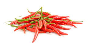 Chili pepper on background Stock Image