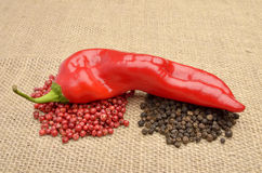 Chili pepper, black pepper and cayenne papper Stock Photography
