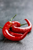 Chili pepper on a black stone background Stock Images