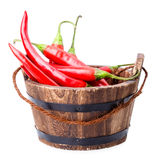 Chili pepper bucket Stock Photography