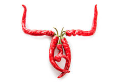 Chili Pepper Bull Horns Fotografie Stock