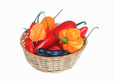 Chili pepper, Capsicum annuum. Various, chili pepper, Capsicum annuum Royalty Free Stock Images
