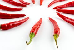 Chili pepper circle, long spicy pods piled in a circle of vegetable pattern. Two guides stock photo