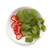 Chili Pepper and Coriander Isolated Stock Photos