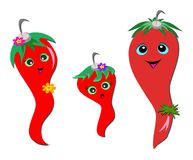 Chili Pepper Family Stock Image