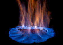 Chili pepper on fire Royalty Free Stock Image