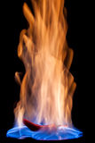 Chili pepper on fire Royalty Free Stock Images