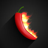 Chili pepper in fire. Vector illustration of chili pepper in fire Stock Images