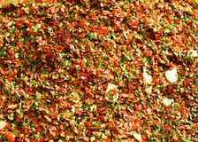 Chili pepper, garlic and parsley background Stock Images