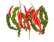 Chili pepper and green bell pepper Royalty Free Stock Image