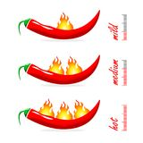 Chili pepper icon with fire, spicy vegetable illustration, spicy mexican food.  Indicator pepper fire strength scale. Red Chili Pe. Pper with flame on white Stock Photo