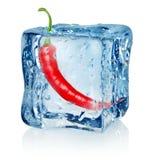 Chili Pepper In Ice Cube