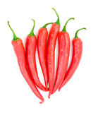 Chili pepper isolated Royalty Free Stock Image