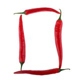 Chili pepper isolated Royalty Free Stock Photo