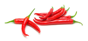 Chili pepper isolated on white background Royalty Free Stock Images