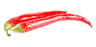 Chili pepper. Isolated on a white background Stock Image