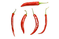 Chili pepper isolated on a white background Stock Image