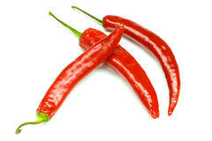 Chili pepper isolated on a white background Stock Photography