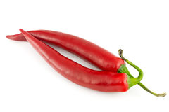 Chili pepper  isolated on white Stock Images