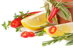 Chili pepper and lemon. Royalty Free Stock Image