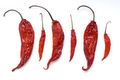 Chili Pepper Mix Royalty Free Stock Images