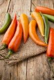 Chili pepper. Stock Photos