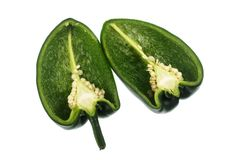 Chili Pepper Poblano lizenzfreies stockfoto