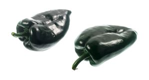 Chili Pepper Poblano. The Poblano pepper is a type of Capsicum annuum. It is a mild chili originated from the State of Puebla in Mexico. Dried is called ancho or stock photography