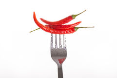 Chili pepper pricked on the steel fork isolated Royalty Free Stock Photo