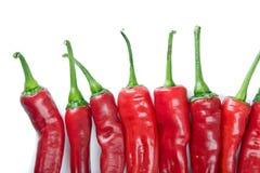 Chili Pepper Queue Stock Images