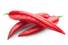 Chili pepper Royalty Free Stock Photo