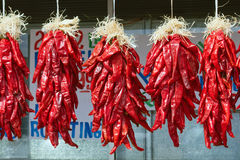 Chili Pepper Ristra Royalty Free Stock Images