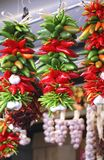 Chili Pepper Ristra rosso e verde intelligente immagine stock libera da diritti