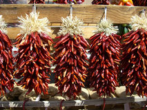 Chili Pepper Ristras Royalty Free Stock Photography