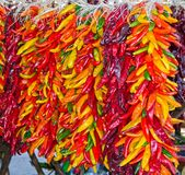 Chili Pepper Ristras stock photography