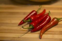 Chili Pepper rojo Imágenes de archivo libres de regalías