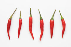Chili Pepper rouge Photos stock