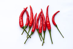 Chili Pepper rouge Photo stock
