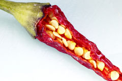 Chili pepper and seeds Royalty Free Stock Photography