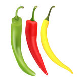 Chili pepper set. Royalty Free Stock Image