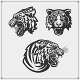 Chili Pepper Set. Pepper Icons, Emblems And Design Elements.Set Of Tiger Heads. Royalty Free Stock Photos
