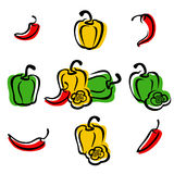 Chili and pepper set. Vector Stock Photography