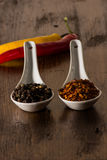 Chili and pepper in shells Royalty Free Stock Photography