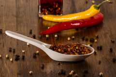 Chili and pepper in shells Stock Image