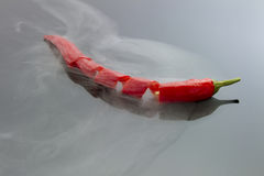 Chili pepper with steam Stock Images