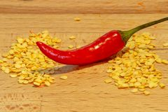 Chili pepper in-between two piles of seeds royalty free stock images