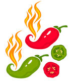 Chili pepper. Vector set illustration of a chili peppers with fire Royalty Free Stock Photos