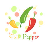 Chili Pepper Vegetable Vector Royaltyfria Bilder